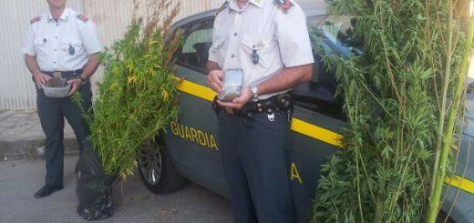 07.09.2013 - Sequestro Stupefacenti