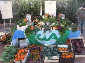 Cia foto prodotti agricoli
