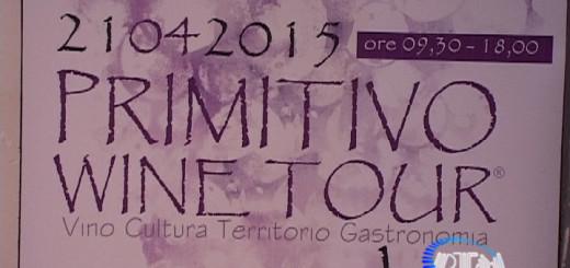 Primitivo Wine Tour 4